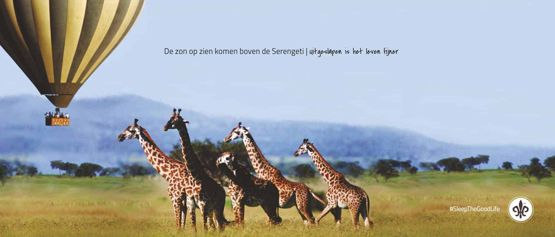 serengeti_breed_pc